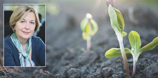 Φραντζέσκα Υδραίου: Τα παράνομα φυτοφάρμακα απειλούν την παραγωγή