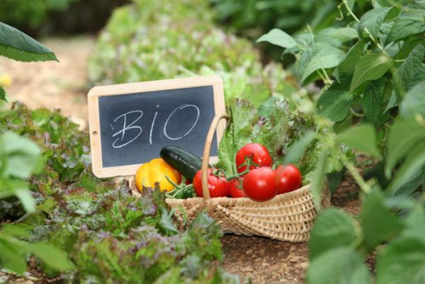 Μέχρι τις 31/7 η σύναψη σύμβασης με σύμβουλο για Βιολογικές καλλιέργειες