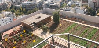 City farm: Ο κρίκος που ενώνει την αστική με την αγροτική ζωή