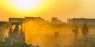 Δρόμος σπαρμένος με εμπόδια για τους νέους αγρότες