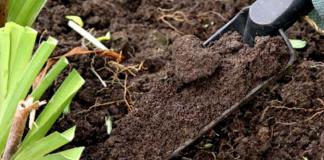 Γρεβενά: Δωρεάν εδαφολογικές αναλύσεις σε αγροτεμάχια