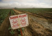 EFSA: Ασφαλή τα τρόφιμα από υπολείμματα φυτοφαρμάκων αλλά…