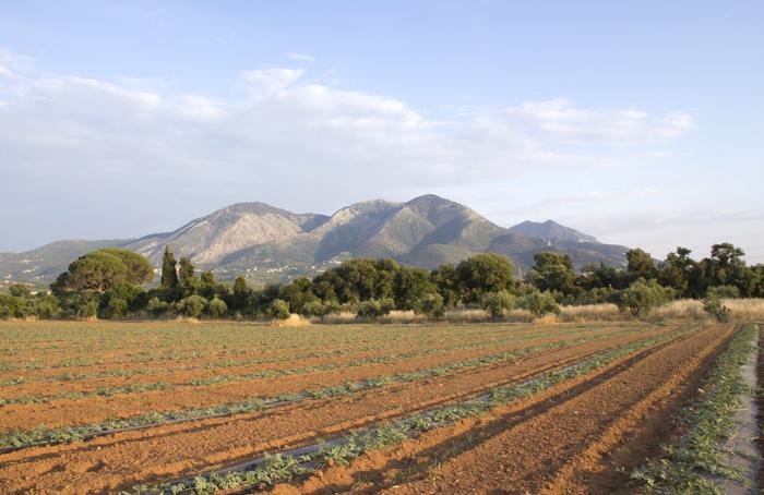 Aγρόκτημα- πρότυπο για τη βιώσιμη γεωργία από την Greenpeace