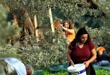 Η βιολογική γεωργία ευνοεί την συμμετοχή των γυναικών στο αγροτικό επάγγελμα