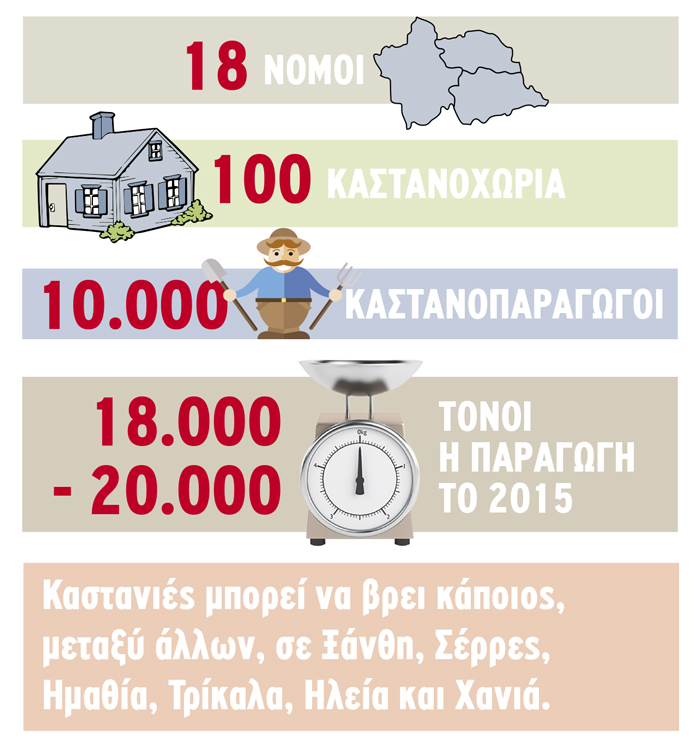kastano-paragogi-infographic