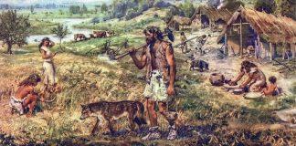 Οι νεολιθικοί γεωργοί - κτηνοτρόφοι στην προϊστορική Ελλάδα προτιμούσαν το κρέας παρά το γάλα