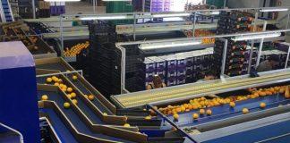 ΑΣ Sparta Orange: Μετά το νέο συσκευαστήριο και στα Ηνωμένα Αραβικά Εμιράτα