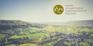 Κέντρο Αγροδιατροφικής Επιχειρηματικότητας Μεσσηνίας: Όλα όσα πρέπει να γνωρίζετε