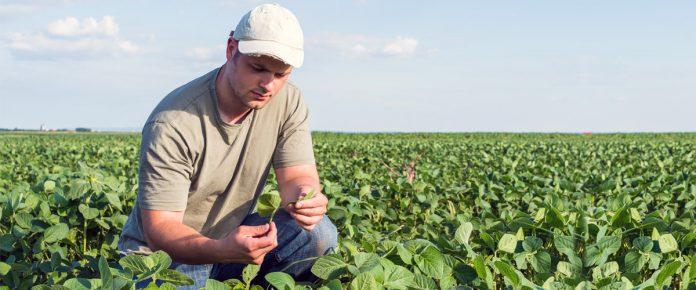 Σε πέντε δόσεις η αύξηση εισφορών των αγροτών ως το 2022: Ολόκληρη η εγκύκλιος