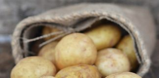 Ανοδικές τάσεις κατέγραφε η τιμή για την πατάτα της Βοιωτίας