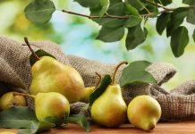 USDA: Κατά 8% μειωμένη η ευρωπαϊκή παραγωγή αχλαδιών