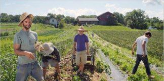 Ενημέρωση Περιφερειών για την οριστικοποίηση φακέλων νέων γεωργών