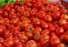 Δέσμευση 8 τόνων ντομάτας Πολωνίας σε επιχείρηση του Ρέντη