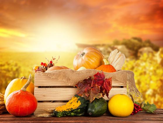 Μίχαλος: Η Ελλάδα αποτελεί μια χώρα με μεγάλες ευκαιρίες και στοντομέα των τροφίμων