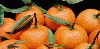 Δέσμευση φρούτων χωρίς σήμανση σε επιχείρηση του Ρέντη