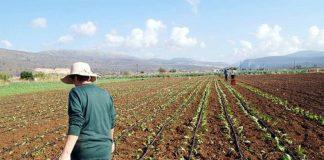 Καμπανάκι της Κομισιόν στην Ελλάδα για τη νιτρορύπανση