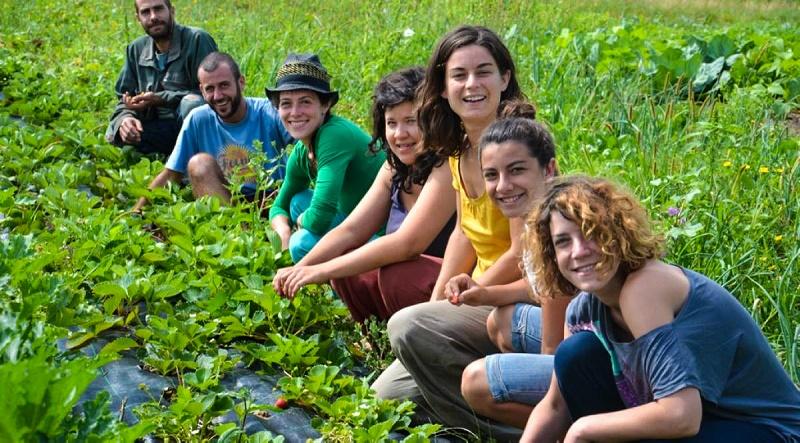 Αγροτουρισμός: Καλλιεργήστε… τουρίστες στη φάρμα σας