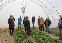 Με πρωτοβουλία ΥΠΑΑΤ προσαρμοσμένες δράσεις κατάρτισης για νέους σε γεωργία και κτηνοτροφία