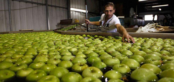 Νέα, απλούστερη διαδικασία αδειοδότησης για τις επιχειρήσεις μεταποίησης τροφίμων και ποτών