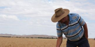 Βάσει του μειωμένου από το αφορολόγητο εισοδήματος η προκαταβολή φόρου των αγροτών