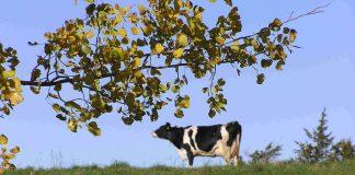Σε νέες περιπέτειες βάζει το ΥΠΑΑΤ τα πολυλειτουργικά αγροκτήματα