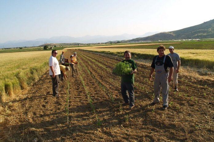 Δημιουργία Ομάδων Παραγωγών στα επόμενα βήματα του ΑΣ Ελάτειας Φθιώτιδας