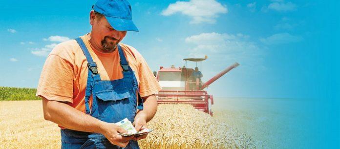 Αύξηση 2,4% του δείκτη αμοιβής συντελεστών παραγωγής στη γεωργία
