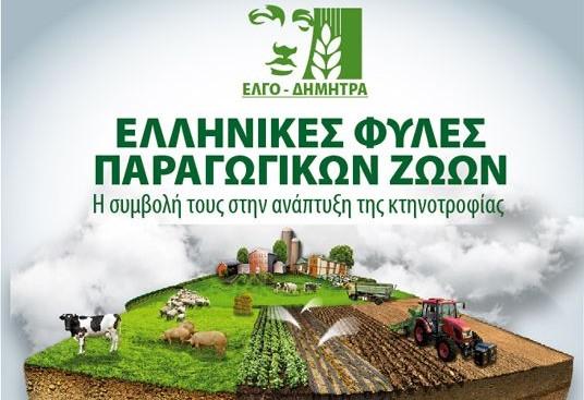 Zootechnia 2017: Ημερίδα του ΕΛΓΟ-ΔΗΜΗΤΡΑ για τις ελληνικές φυλές παραγωγικών ζώων