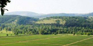 O δήμος Βόλου σε πρόγραμμα για ενίσχυση των αγροτικών περιοχών