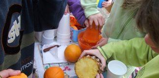 H επίδραση του σχολείου στη διατροφική συνείδηση