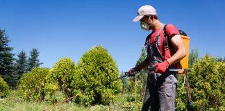 Αποτελέσματα ελέγχων της ΔΑΟΚ Πειραιά για υπολείμματα φυτοφαρμάκων στα τρόφιμα