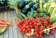 Η εξάρτηση από τις εισαγωγές απειλεί ανταγωνιστικότητα και… γεύση