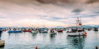 Συνάντηση στον Πειραιά εκπροσώπων αλιευτικών συλλόγων για τα προβλήματα του κλάδου