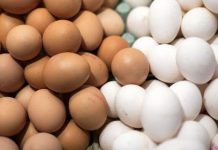 Τον αυτο...έλεγχό τους ετοιμάζουν οι Έλληνες αυγοπαραγωγοί, κρούοντας τον κώδωνα του κινδύνου για τις ελληνοποιήσεις