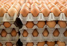 Δέσμευση αυγών και αλλαντικών στο λιμάνι του Πειραιά