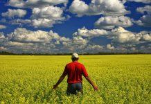 ΟΠΕΚΕΠΕ: Οι «sos» ημερομηνίες για τις μεταβίβασης δικαιωμάτων