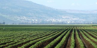 Γρεβενά: Ανησυχία των αγροτών για τη μη ένταξή τους στο πρόγραμμα των βιολογικών