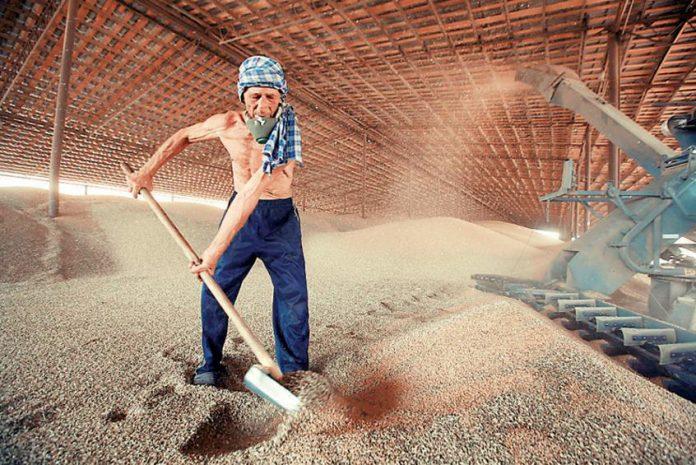 Εμπάργκο στις εισαγωγές σιτηρών από τη Ρωσία επιβάλει η Τουρκία
