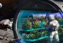Διαστημική γεωργία και η εφαρμογή της στις… γήινες ανάγκες