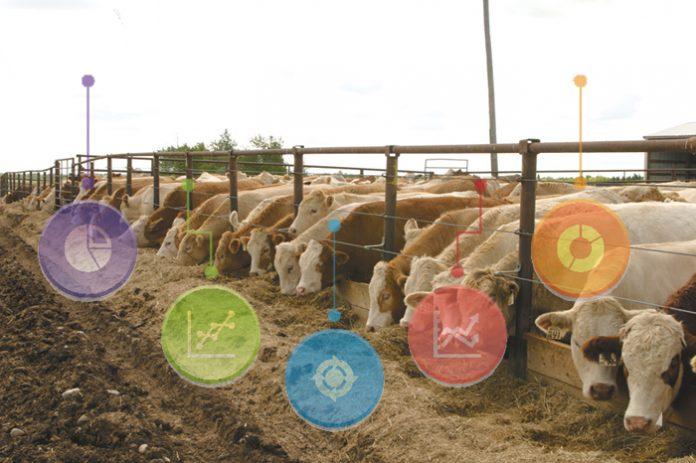 Τα οφέλη των φυτογενών πρόσθετων ζωοτροφών