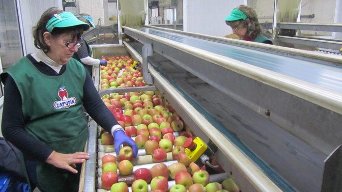 Η διεύρυνση δρομολογεί επενδύσεις σε ψυγεία και διαλογητήριο για τον ΑΣ Ζαγοράς