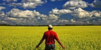 ΟΠΕΚΕΠΕ: Έτοιμες οι τράπεζες να υποστηρίξουν την Κάρτα Αγρότη