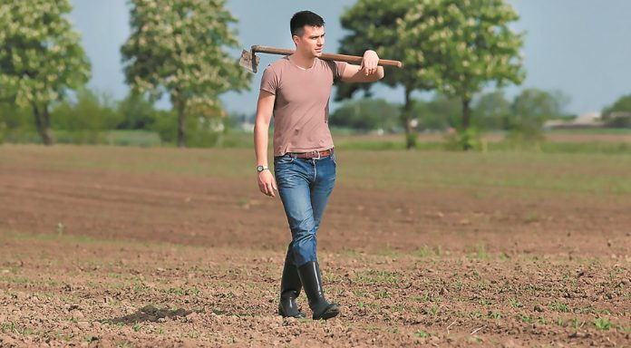 Aγροτικό και με τη βούλα το εισόδημα από τα πλεονάσματα συνεταιρισμών