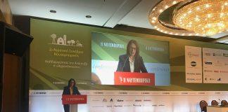 Κ. Παπανάτσιου: Ανανεωμένο ΣΔΟΕ στη μάχη κατά των ελληνοποιήσεων