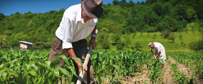 Για ποιες κατηγορίες ενεργών συνταξιούχων ισχύει η περικοπή σύνταξης και η καταβολή εισφορών