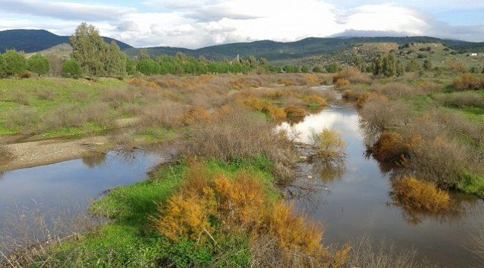 ΚΚΕ: Καθαρίστε τις κοίτες των ποταμών - πλημμυρίζουν ποτάμια