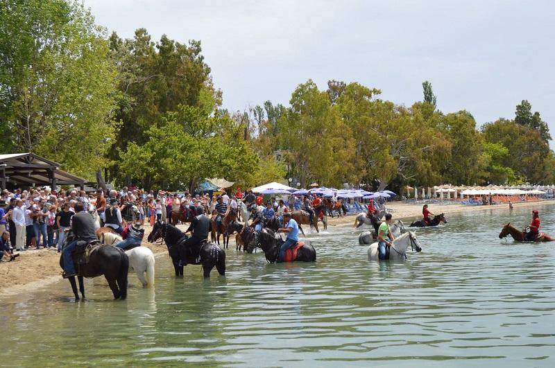Αναβιώνει το έθιμο αγιασμού των αλόγων στα Καλά Νερά