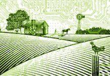 Ευρωπαϊκή Σύμπραξη Καινοτομίας για τη βιωσιμότητα και την παραγωγικότητα στη γεωργία