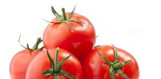 Ρωσία Συνέχιση του εμπάργκο στις τουρκικές ντομάτες