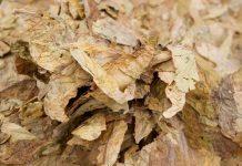 Βρέθηκαν έξι δέματα με 69 κιλά λαθραίου καπνού στο Αγρίνιο